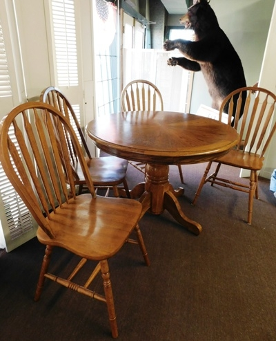 "42"" ROUND OAK DINING TABLE + 4 BOW-BACK SIDE CHAIRS"
