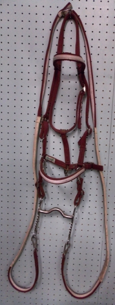 HALTER & BRIDLE COMBO FROM QATAR, MAROON & WHITE