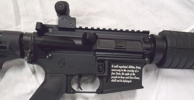 View 3~STAG ARMS 5.56mm RIFLE