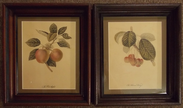 TWO ANTIQUE WALNUT FRAMES WITH FRUIT PRINTS